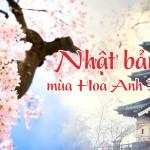 banner-nhat-ban58a53087839b3_da3d4626590c1dad82c96774234de970